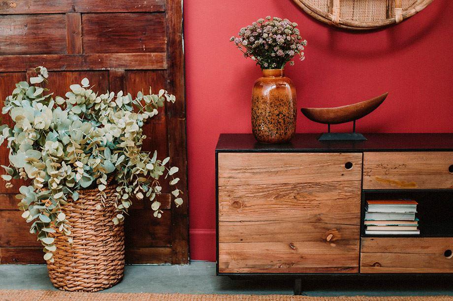 rincón de salón con plantas y accesorios