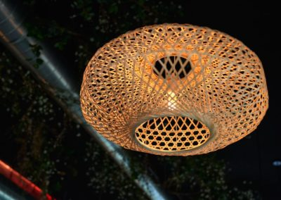 Proyecto Burro Canaglia lámpara de fibra
